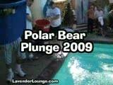 Polar Bear Plunge || 