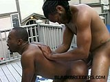 gay porn Jamaican Breeding Service || You Can Always Trust That You'll Get a Real Good Breeding From a Guy In Dreads.