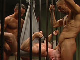 gay porn Titan Toby O'connor Services C || Meanwhile, Riley Porter watches blue-eyed pup Toby O'Connor servicing well-hung Chad Williams in the adjoining cell. For a pack of smokes, Williams gives his boys ass to Porter, who rims and fucks OConnor through the bars. After they all blow their wads, Williams hoists O'Connor onto a sheet hanging from the ceiling. Their makeshift sling allows Porter and Williams to fuck him from both ends, sharing his eager holes without missing a beat. Porter also flip-flops for Williams and the trio cums all over each other through the bars that separate their cells.