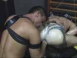 gay porn Fist Pigs || the Euro Pigs Are Back for Another Ass Stretching.