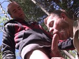 Gay Porn from SUCKoffGUYS - Sucking-Off-Big-Wood