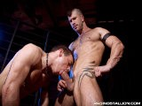 Adam Killian and Jesse Santana Have a Blast Pawing and Sniffing Around Each Other Like a Pair of Frisky Pooches on the Prowl. the Two Muscled Studs Play-act Before Slobbering Each Other's Sweaty Assholes With Their Snouts. Adam and Jesse Work Each Other Ragged Taking Turns Sucking, Rimming and Fucking With Sheer Abandon. and Their Rabid Dogfight Comes to a Satisfying End When Both of Them Finally Bust Their Nuts.