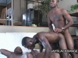 Two Black Studs Billy Long and Black Hawk Fucking Tyler's Ass and Mouth Until They Cum.