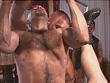 gay porn Riding Two Cocks At On || Muscled Up Ramon Lopez Hops on Top of Hairy Bear Boy, Who's Sitting In the Sling, and Rides His Long, Thick Meat.<br />