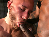 gay porn Santino Vega And Drake || Drake Jaden stares longingly at hung dark stallion, Santino Vega in this video, in preparation of what is to cum. Like a true cock loving pig, Drake shows he has the skills to swallow inch after inch after throbbing inch. The pair are well matched in energy and in beautiful contrast. Vega's sleek brown inked skin driving deep into Jaden's smooth pink flesh. He takes command and has Drake yelling for more, twisting his legs apart to get to the juicy pink center. He drives it deeper and deeper until both men blow their massive loads!