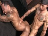 gay porn Let's Fuck The New Guy || Three Hot Latin Guy Fucking and Sucking