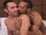 Gay Porn from sebastiansstudios - Breeding-Diego-Cruz
