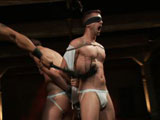 gay porn Spencer, Tony, Troy And Van || Spencer Reed ties up and fucks two slave boys during a live show.