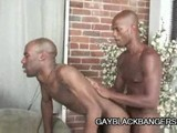 Gay Porn from GayBlackBangers - Black-Dude-Drilling-Black-Ass