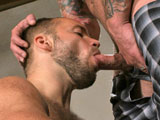Gay Porn from hairyboyz - David-Novak-And-Ricky-Sinz