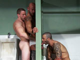 gay porn Titan Aymeric Sha, And Junior || In a dirty mens room, tattooed Aymeric DeVille approaches the urinal, his muscular back filling the frame. He pulls down his jeans, his jock butt exposed from his open-ass briefs as he strokes his uncut cock. Dark and hairy Junior Stellano makes his way to the open stall, sitting on the toilet and stroking his big dick as he eyes Aymeric through the glory hole. Aymeric shoves his cock through the wall as Junior starts to feast. Shay Michaels eyes the action from the sink mirror as the suck sounds turn him on. Hes quickly on his knees, burying his bearded face inside Aymerics hole as Junior continues to blow. Shay reaches underneath to stroke Juniors cock, then strips down to show off his built bod. He slides his hard dick inside Aymerics hole, rubbing the groaning bottoms back. Shay kisses Aymerics neck and ear, wrapping his arms around the stud to rub his pecs. Junior jacks Aymerics load out before Shay squirts on Aymerrics ass. Junior comes, then offers his ass to Aymerics tongue while wrapping his lips around the increasingly verbal Shay: All the waythere you go! As Junior deep throats Shay, Aymeric fucks the muscle man from behindthe bottoms monster quads clenching. The two rub Juniors bod as they double-team him, then switch positions. Shays pecs bounce as he plows Junior deep , but the bottom soon turns the tables. Sitting on the toilet, he gets both studs to take turns riding his cock. Their bods tighten up as they shoot their loads while getting fucked, Junior then letting go of his second wad as the three kiss to end the steamy threesome.