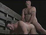 gay porn Daddies In The Wild! || Watch This and Other Hot Movies on Bearboxxx!