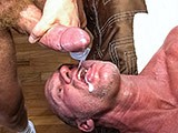 Hung Cock and Muscledaddy