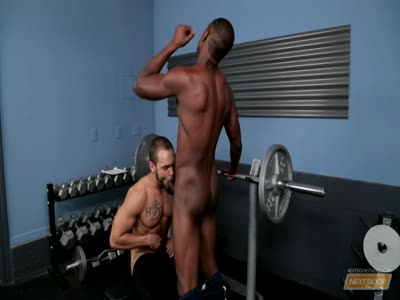 Brock Avery And Derek  - Gay Black Porn