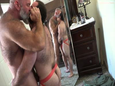 Free bear porn pics
