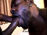 Gay Porn from BlackBreeders - Raw-Monster-Cock