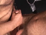 From BearBoxxx - Hairy-Bathhouse-Play