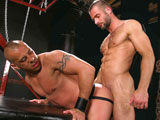 Instinct - Part 2 - Raging Stallion