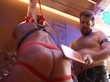 Gay Porn from BearBoxxx - Bear-Discipline