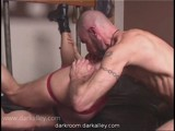 Gay Porn from Darkroom - Lord-Of-The-Pigs