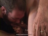 Gay Porn from BearBoxxx - Big-Hairy-Bears-Orgy