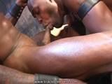From BlackBreeders - Love-Sucking-Black-Cock