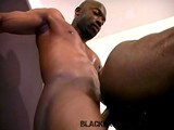 From BlackBreeders - More-Fucking