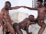 Gay Porn from thugorgy - Big-Black-Orgy