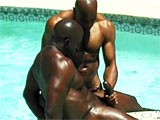 Gay Porn from StrongMen - Amazing-Black-Muscle-Hunks