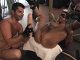 Gay Porn from sebastiansstudios - Hard-Pig-Breeders