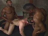 Gay Porn from sebastiansstudios - Anonymous-Interracial-Breeding