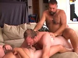 Gay Porn from BearBoxxx - Horny-East-Coast