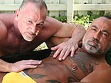 Gay Porn from NakedSword - Beefy-Bears