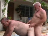 Gay Porn from BearBoxxx - Bears-On-The-Prowl