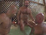 Gay Porn from BearBoxxx - Sonoma-Heat