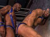 Gay Porn from TitanMen - Icons-Dallas-Steele-And-Diesel-Washington