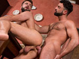 from RagingStallion - Hung-Country
