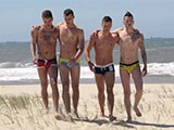 Gay Porn from SwimmerBoyz - Beach-Foursome