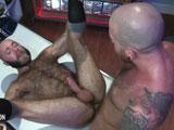 Otter Erotic