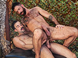 Get A Room Part 5 - Raging Stallion