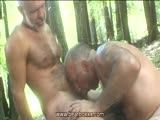 Gay Porn from BearBoxxx - Bears-Blowing-In-The-Woods