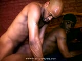 Gay Porn from BlackBreeders - Hard-Lesson