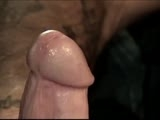 Gay Porn from workingmenxxx - Terry-The-Wild-Man