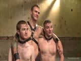 Gay Porn from boundgods - Van-Christian-Seamus-And-Doug-Acre