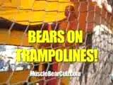 Bears On Trampolines!