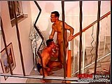 Gay Porn from mountequinox - Stairway-To-Heaven-Pt-1