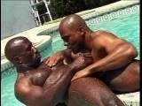 Gay Porn from RocketBooster - Nubian-Horses-Scene-1