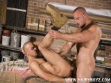 Gay Porn from hairyboyz - Samuel-Ploughs-Damien