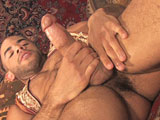 Austin-Wilde - Gay Porn - hairyboyz
