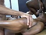 Gay Porn from BlackBreeders - Fucking-Like-Crazy